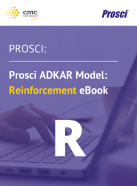 Reinforcement eBook Front Page