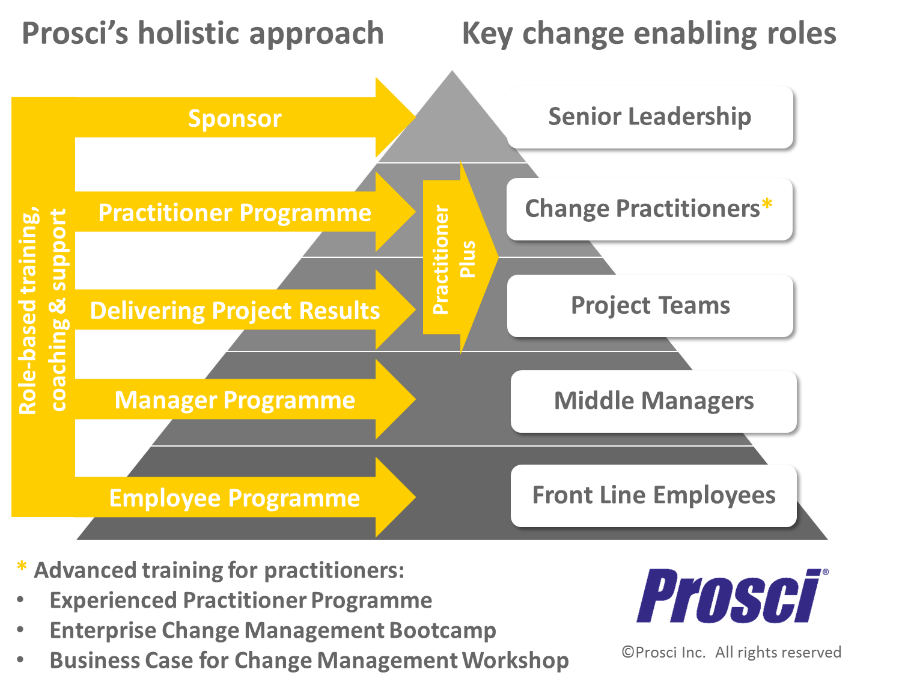 Prosci Holistic Approach