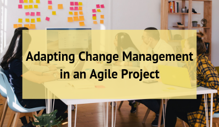 Adapting Change Management in an Agile Project