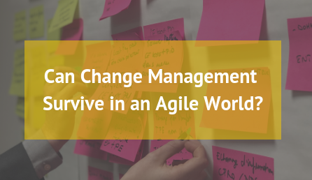 Can Change Management Survive in an Agile World?
